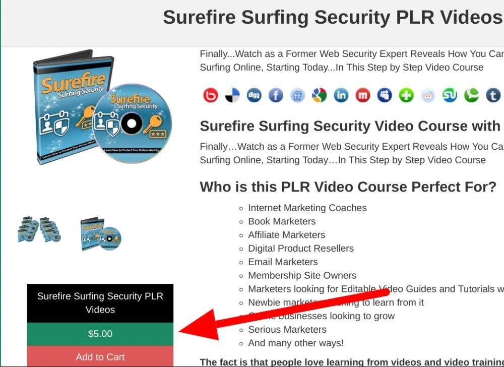 surefire surfing security plr for sale for $5